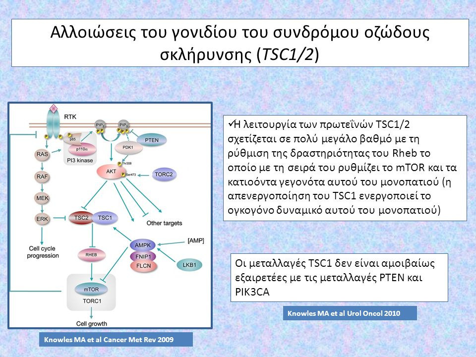 Αλλοιώσεις του γονιδίου του συνδρόμου οζώδους σκλήρυνσης (TSC1/2)