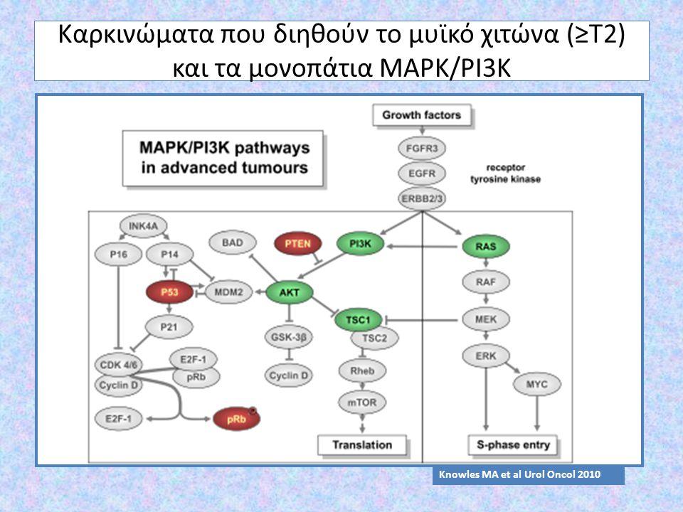 Καρκινώματα που διηθούν το μυϊκό χιτώνα (≥Τ2) και τα μονοπάτια MAPK/PI3K