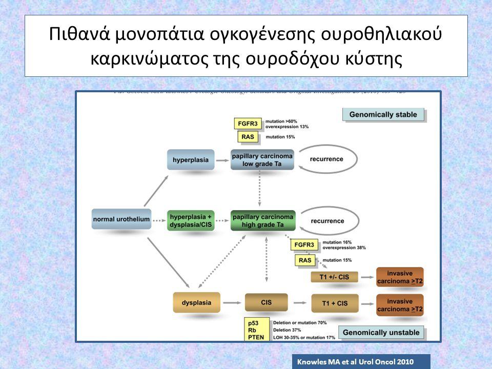 Πιθανά μονοπάτια ογκογένεσης ουροθηλιακού καρκινώματος της ουροδόχου κύστης