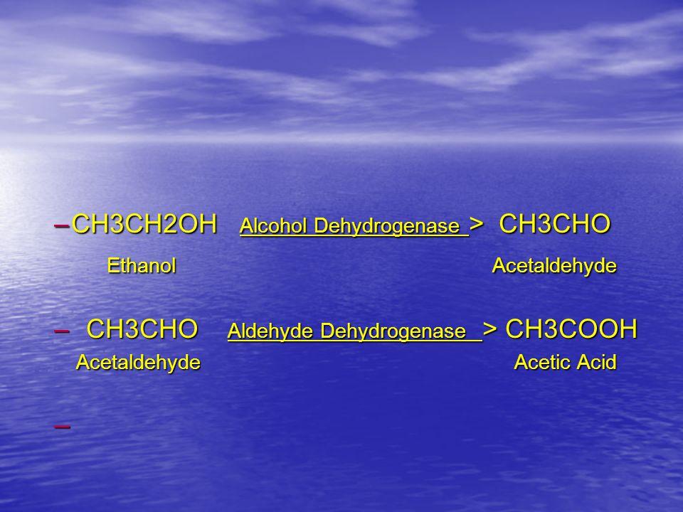 CH3CH2OH Alcohol Dehydrogenase > CH3CHO Ethanol Acetaldehyde
