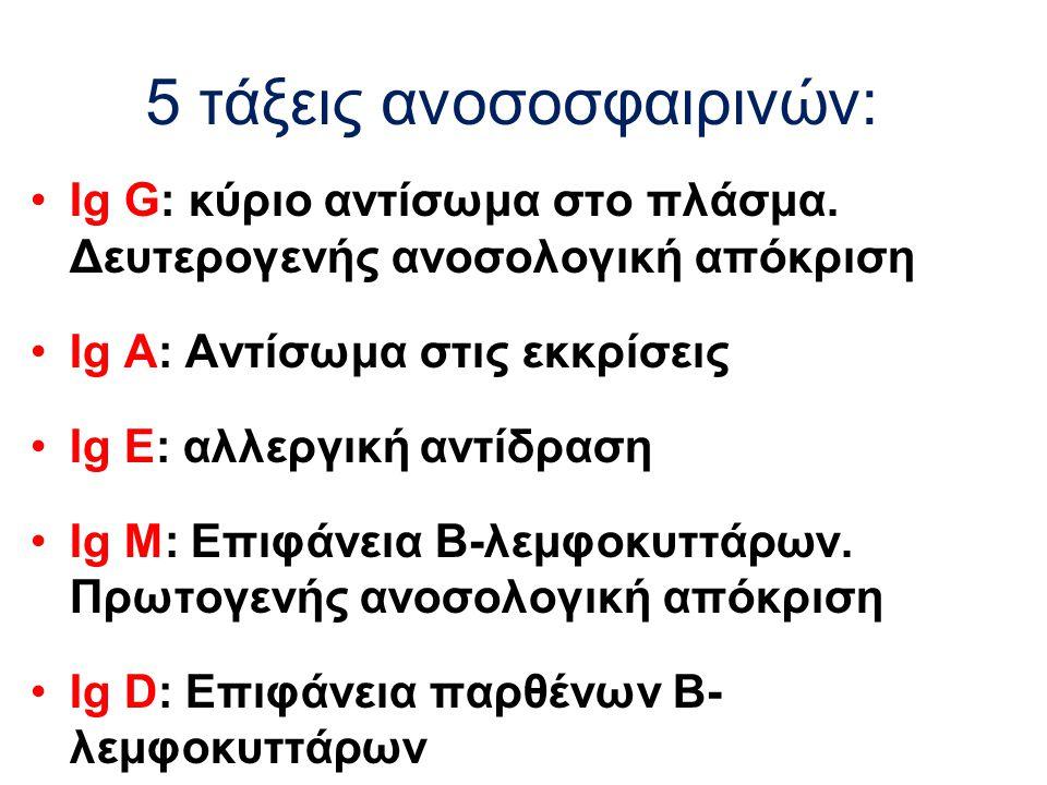 5 τάξεις ανοσοσφαιρινών: