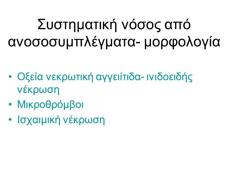 Συστηματική νόσος από ανοσοσυμπλέγματα- μορφολογία