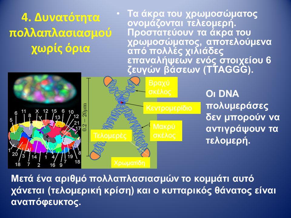 4. Δυνατότητα πολλαπλασιασμού χωρίς όρια