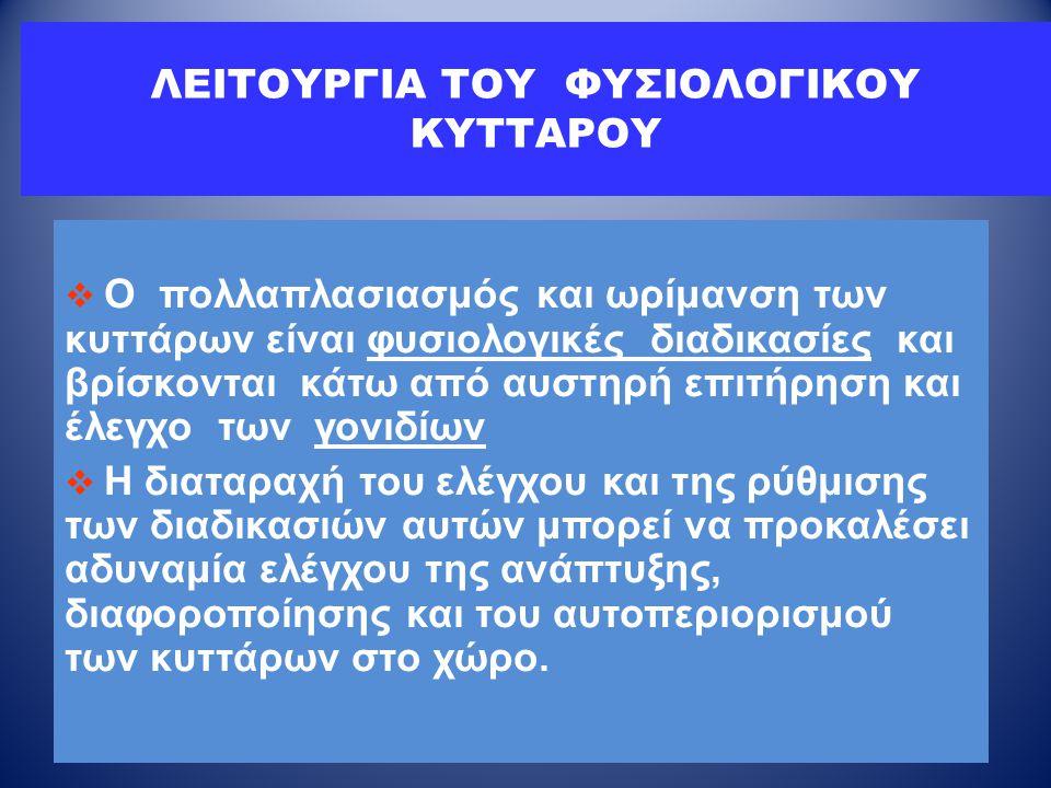 ΛΕΙΤΟΥΡΓΙΑ ΤΟΥ ΦΥΣΙΟΛΟΓΙΚΟΥ ΚΥΤΤΑΡΟΥ