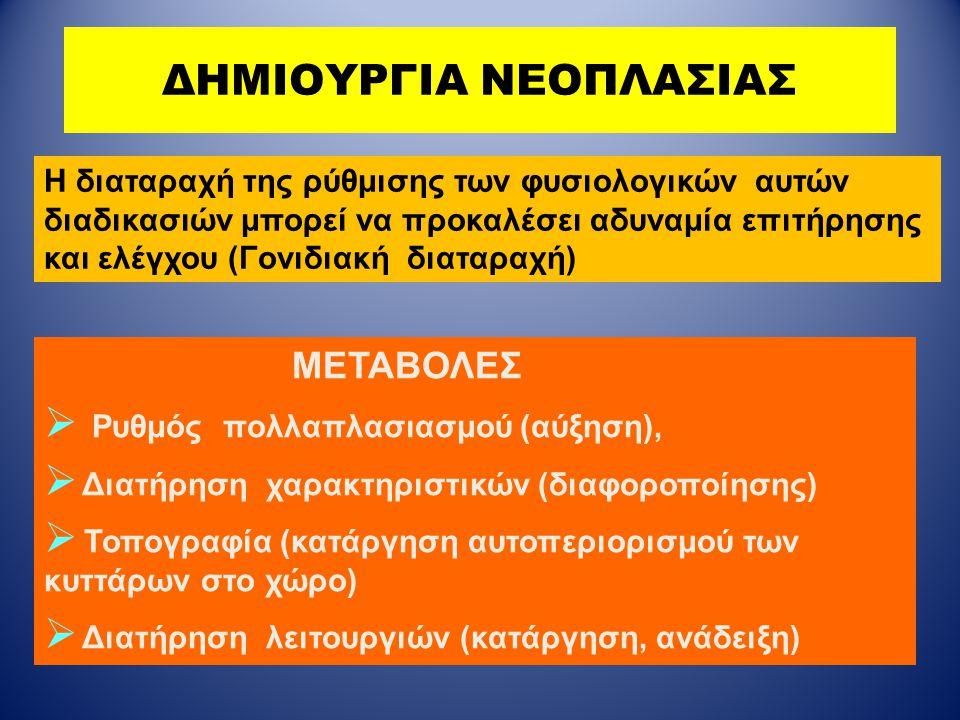ΔΗΜΙΟΥΡΓΙΑ ΝΕΟΠΛΑΣΙΑΣ