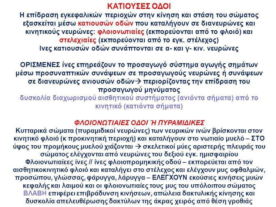 ΚΑΤΙΟΥΣΕΣ ΟΔΟΙ