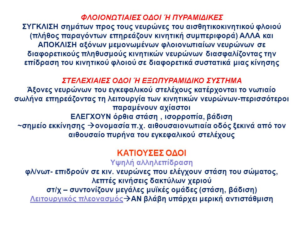 ΚΑΤΙΟΥΣΕΣ ΟΔΟΙ ΦΛΟΙΟΝΩΤΙΑΙΕΣ ΟΔΟΙ Ή ΠΥΡΑΜΙΔΙΚΕΣ