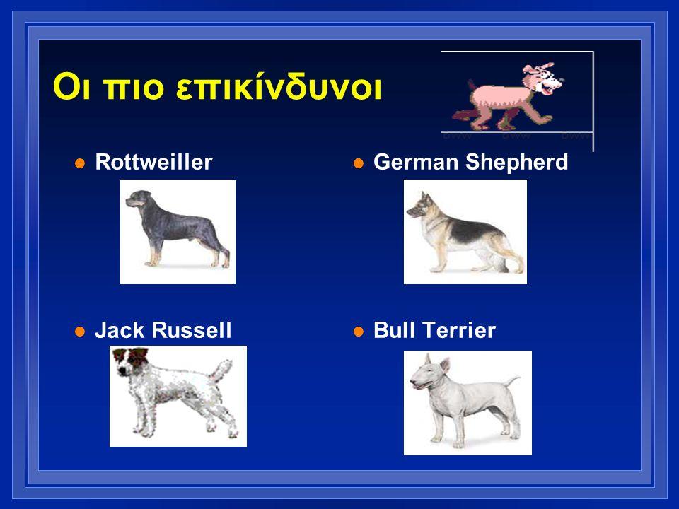 Οι πιο επικίνδυνοι Rottweiller Jack Russell German Shepherd