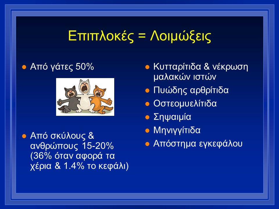Επιπλοκές = Λοιμώξεις Από γάτες 50%