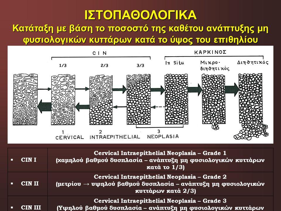 ΙΣΤΟΠΑΘΟΛΟΓΙΚΑ Κατάταξη με βάση το ποσοστό της καθέτου ανάπτυξης μη φυσιολογικών κυττάρων κατά το ύψος του επιθηλίου