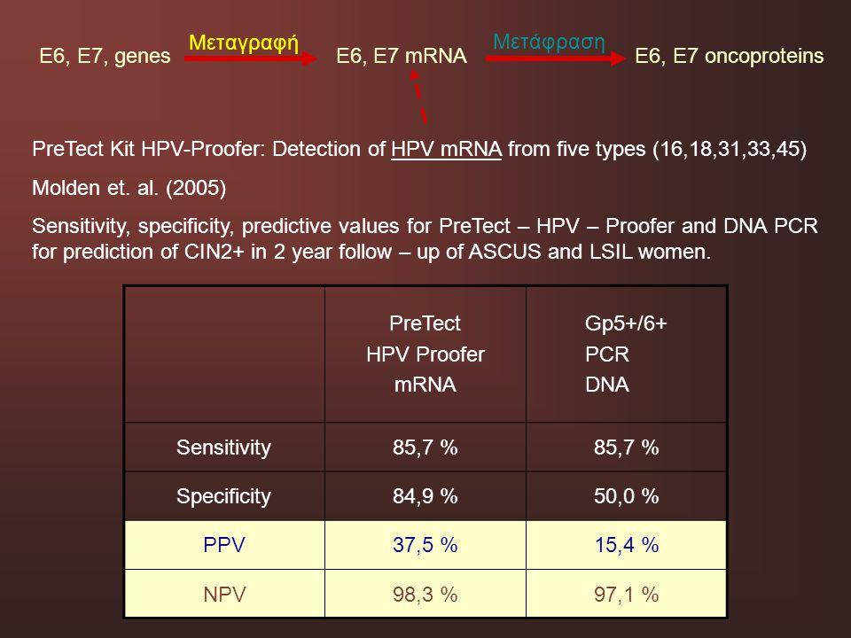 E6, E7, genes E6, E7 mRNA E6, E7 oncoproteins