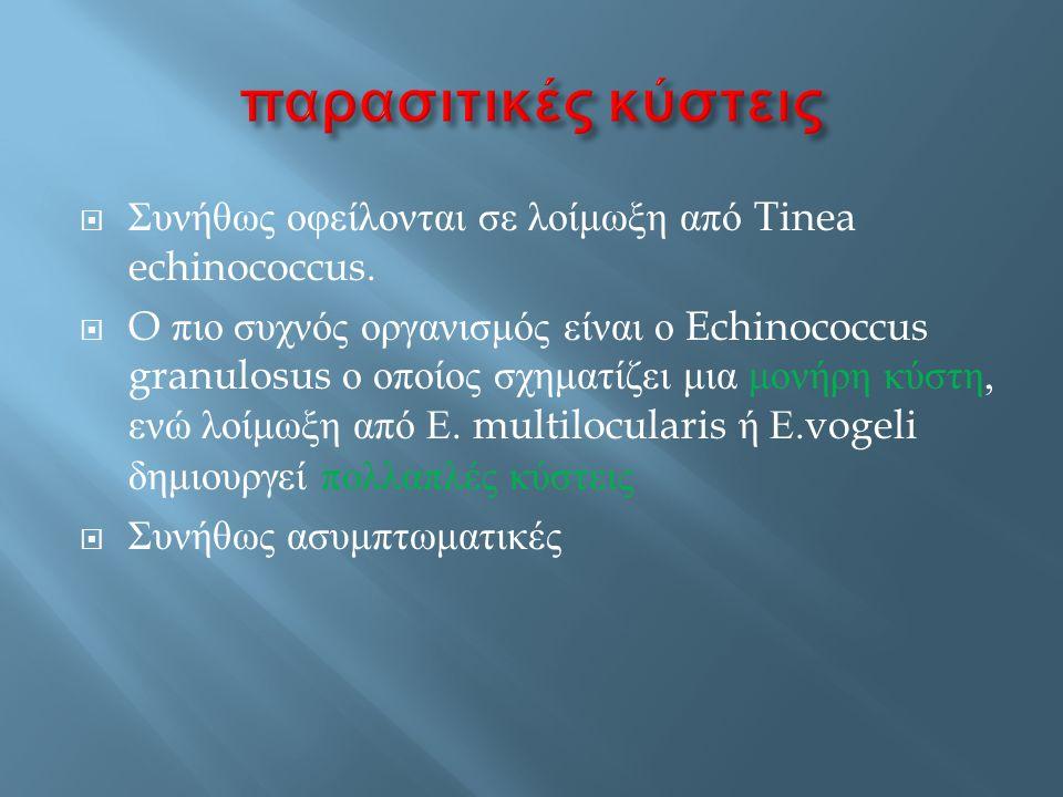 παρασιτικές κύστεις Συνήθως οφείλονται σε λοίμωξη από Tinea echinococcus.