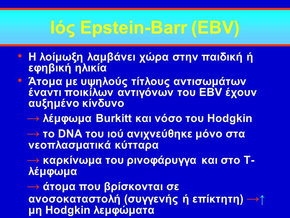 Ιός Epstein-Barr (EBV)