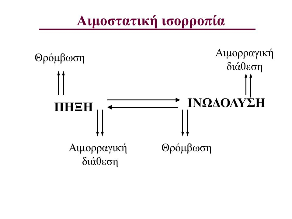 Αιμοστατική ισορροπία