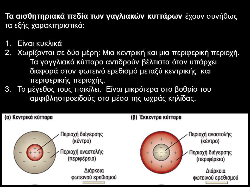 Τα αισθητηριακά πεδία των γαγλιακών κυττάρων έχουν συνήθως