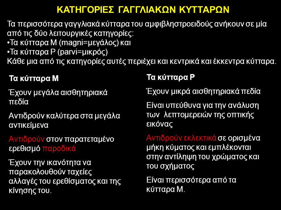 ΚΑΤΗΓΟΡΙΕΣ ΓΑΓΓΛΙΑΚΩΝ ΚΥΤΤΑΡΩΝ