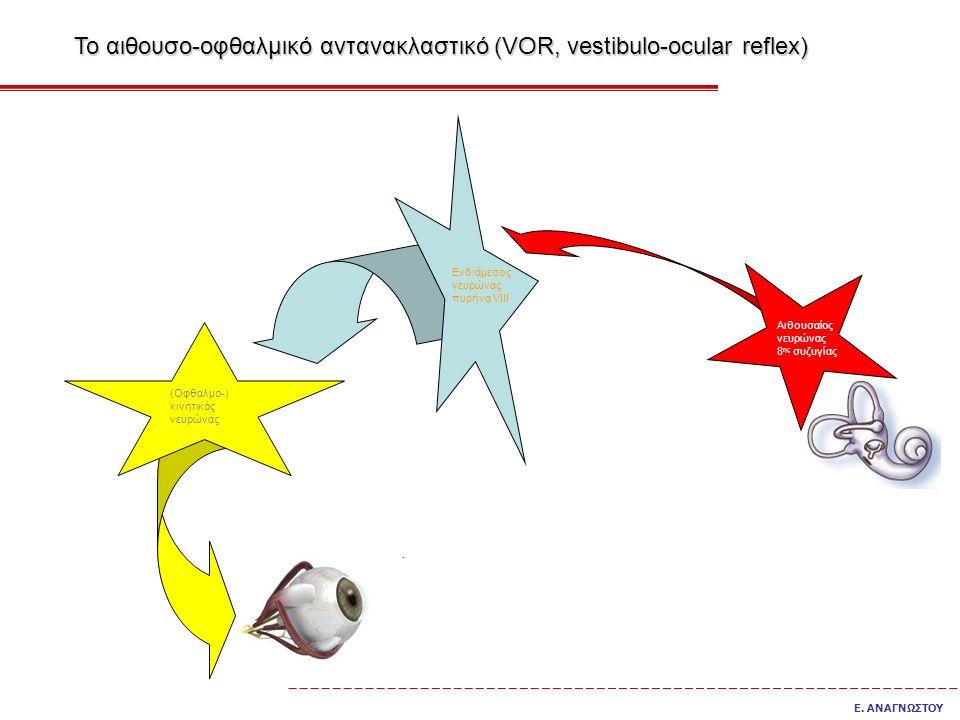 Το αιθουσο-οφθαλμικό αντανακλαστικό (VOR, vestibulo-ocular reflex)