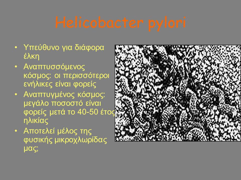Helicobacter pylori Υπεύθυνο για διάφορα έλκη