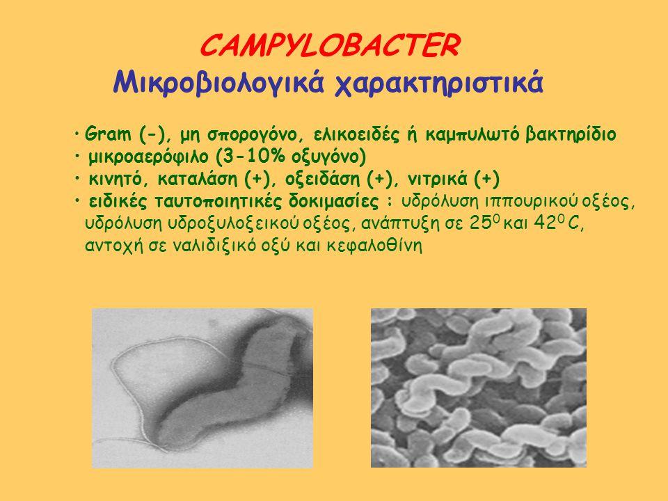 Μικροβιολογικά χαρακτηριστικά