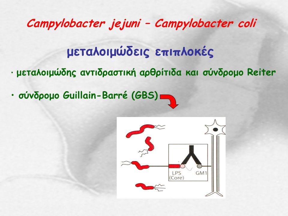 Campylobacter jejuni – Campylobacter coli μεταλοιμώδεις επιπλοκές