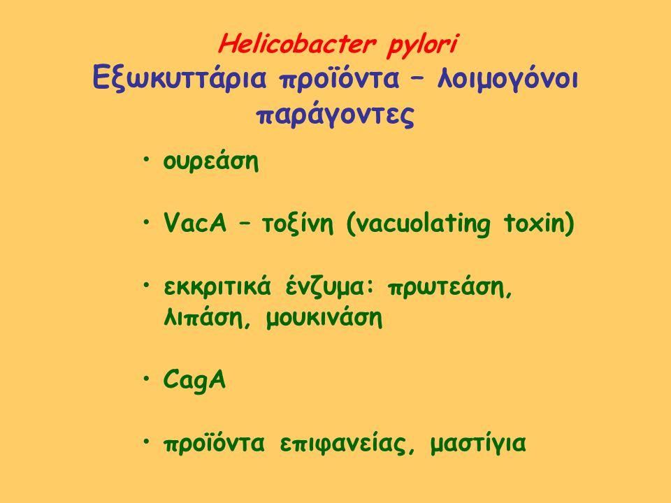Εξωκυττάρια προϊόντα – λοιμογόνοι παράγοντες