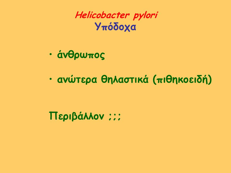 ανώτερα θηλαστικά (πιθηκοειδή)