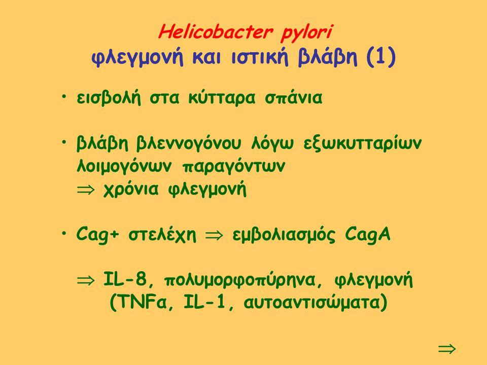 φλεγμονή και ιστική βλάβη (1)