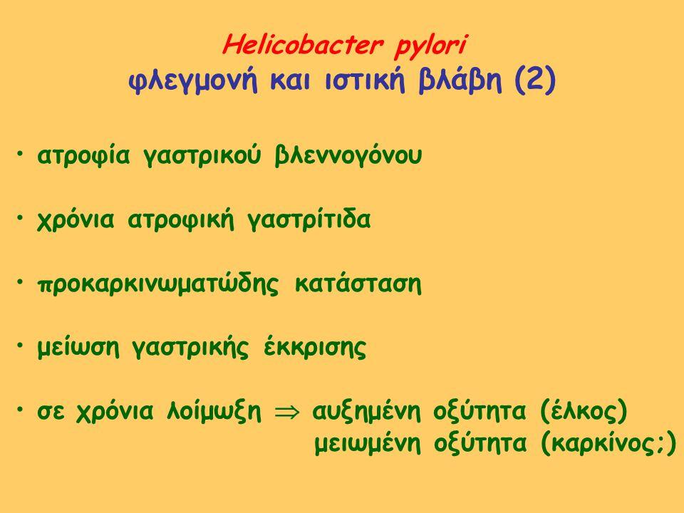 φλεγμονή και ιστική βλάβη (2)