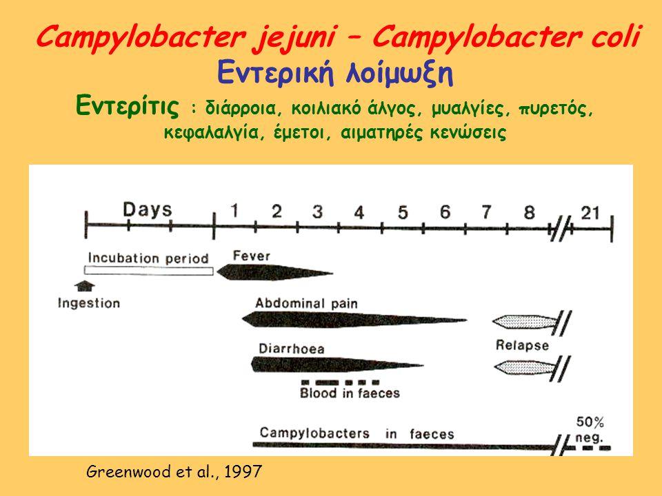 Campylobacter jejuni – Campylobacter coli Εντερική λοίμωξη