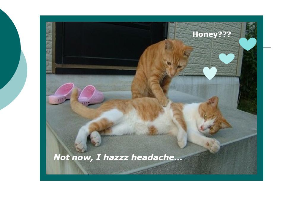 Not now, I hazzz headache…