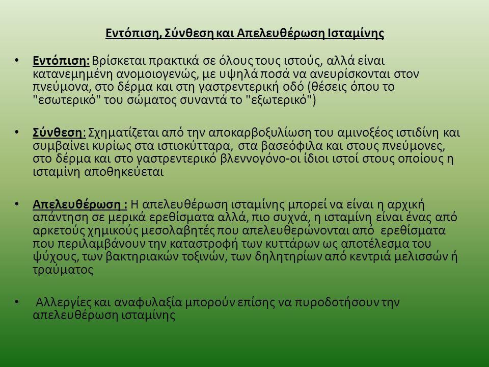 Εντόπιση, Σύνθεση και Απελευθέρωση Ισταμίνης
