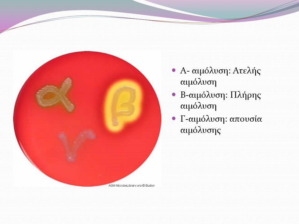 Α- αιμόλυση: Ατελής αιμόλυση