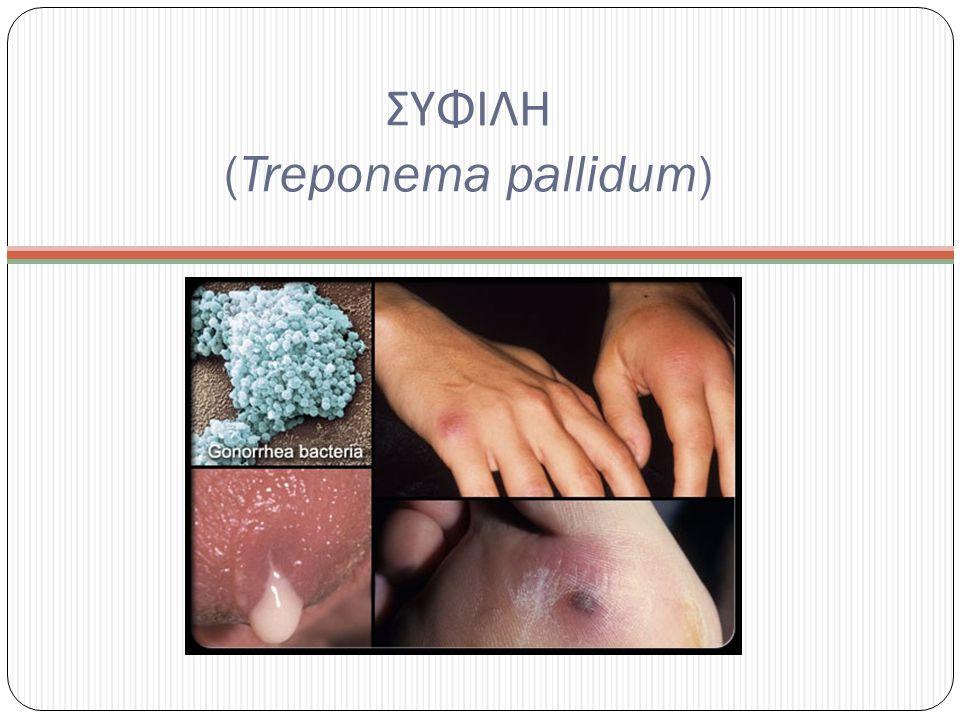 ΣΥΦΙΛΗ (Treponema pallidum)