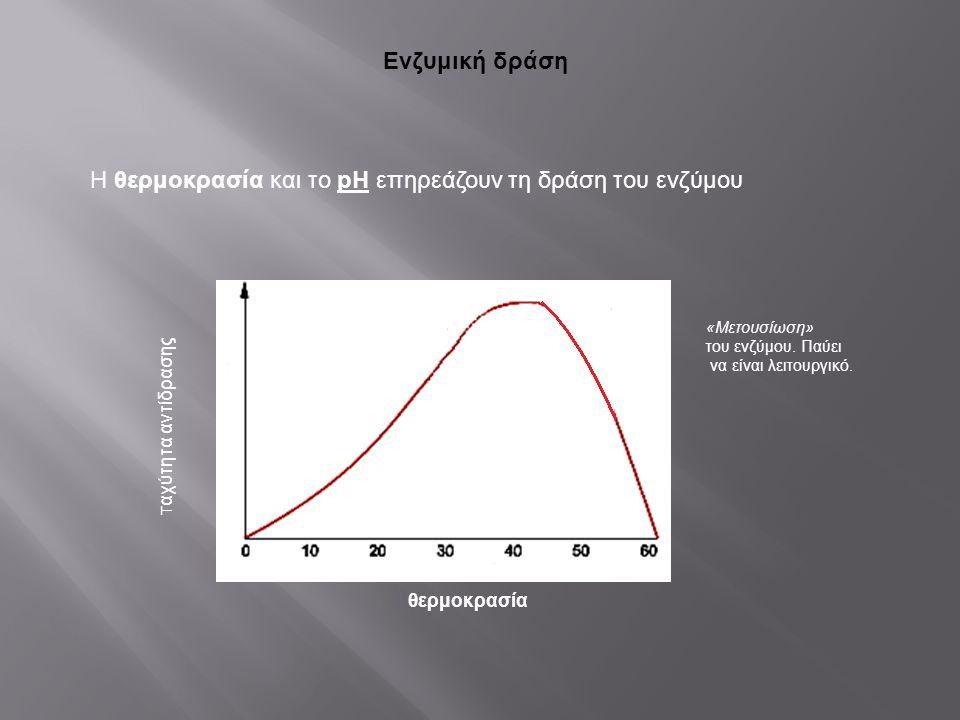 Η θερμοκρασία και το pH επηρεάζουν τη δράση του ενζύμου