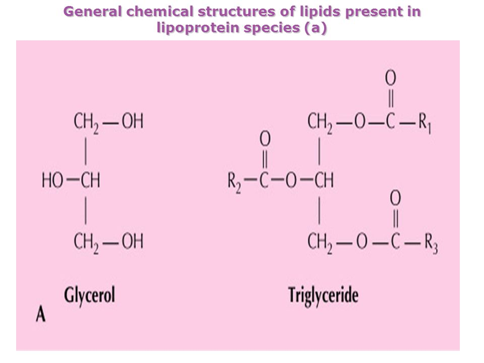 General chemical structures of lipids present in lipoprotein species (a)