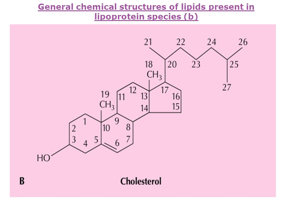 General chemical structures of lipids present in lipoprotein species (b)