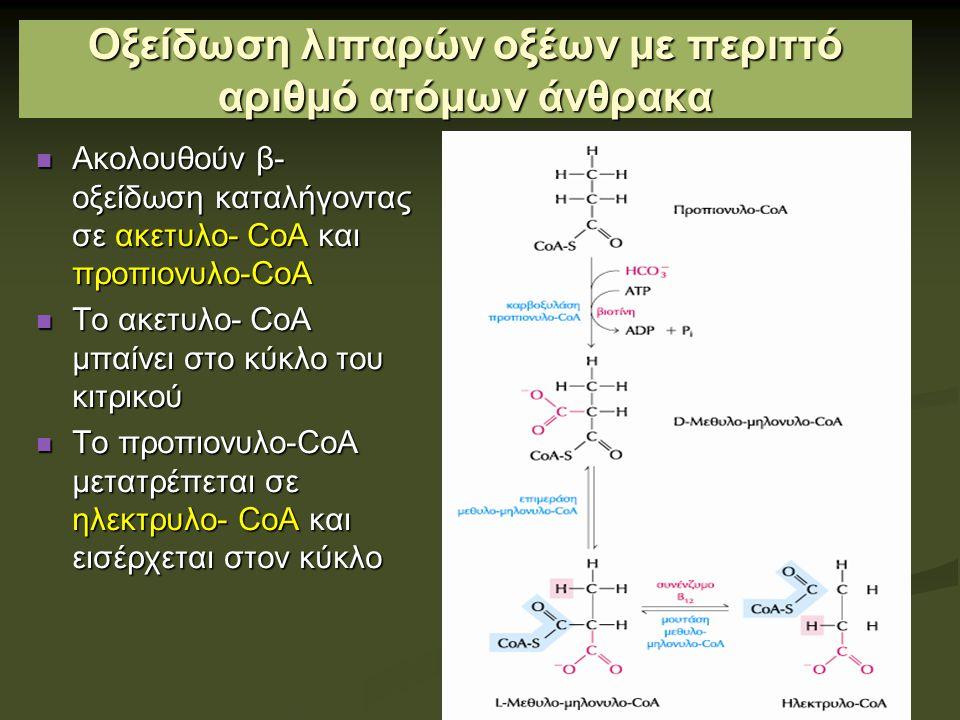 Οξείδωση λιπαρών οξέων με περιττό αριθμό ατόμων άνθρακα