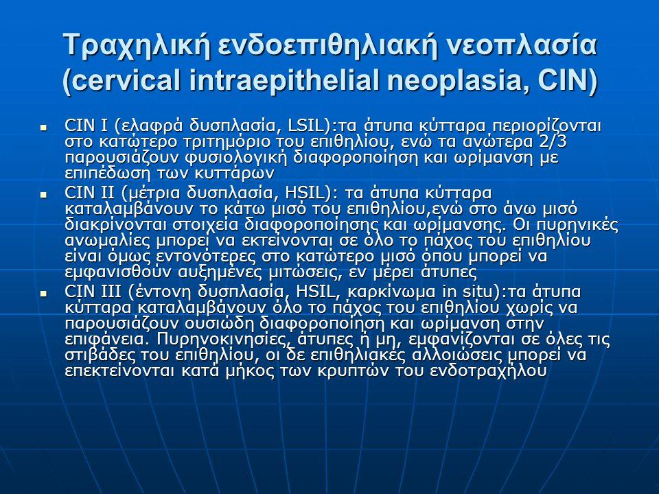 Τραχηλική ενδοεπιθηλιακή νεοπλασία (cervical intraepithelial neoplasia, CIN)
