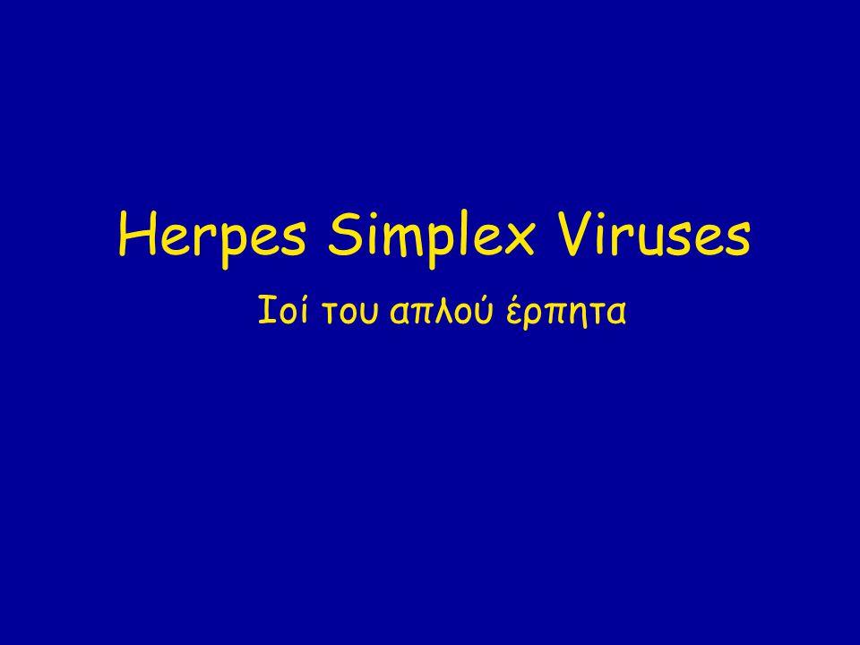 Herpes Simplex Viruses Ιοί του απλού έρπητα