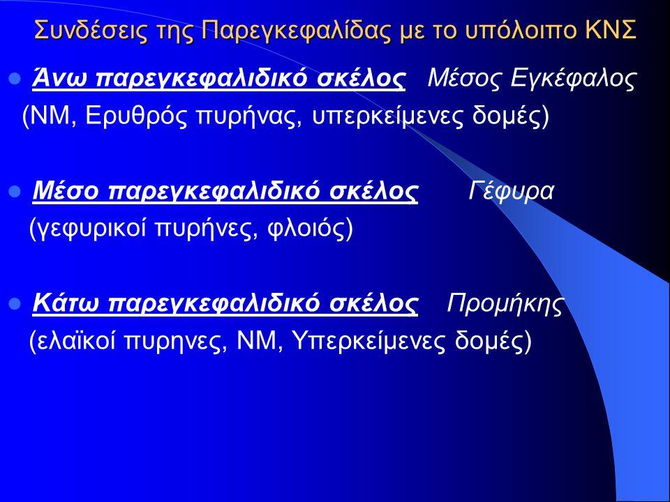 Συνδέσεις της Παρεγκεφαλίδας με το υπόλοιπο ΚΝΣ