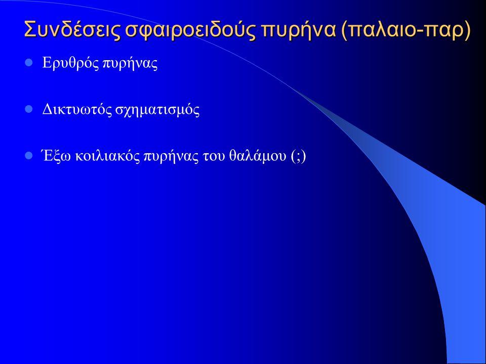 Συνδέσεις σφαιροειδούς πυρήνα (παλαιο-παρ)