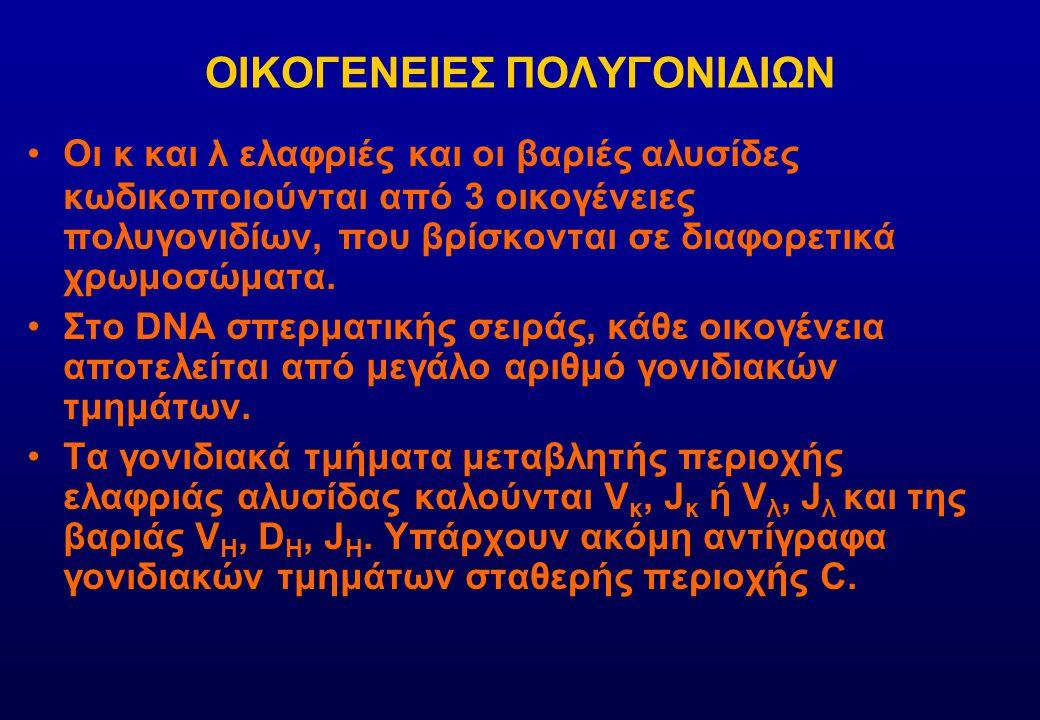 ΟΙΚΟΓΕΝΕΙΕΣ ΠΟΛΥΓΟΝΙΔΙΩΝ
