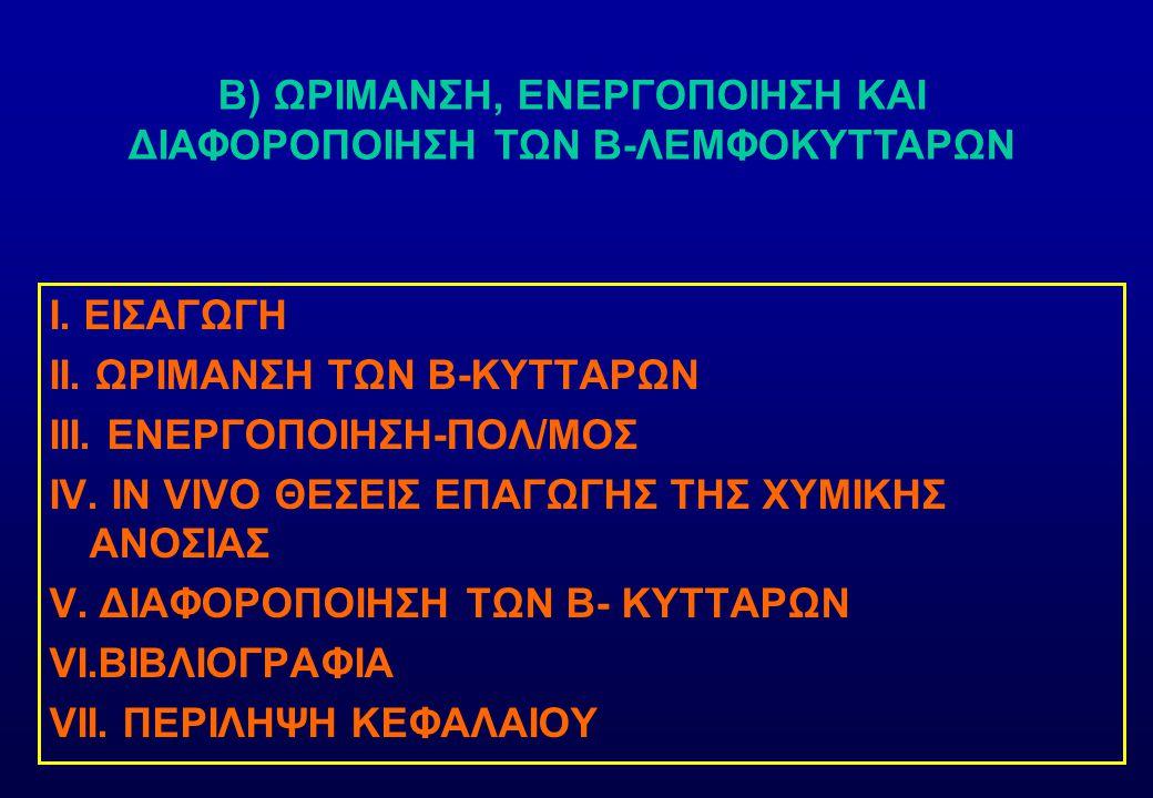 B) ΩΡΙΜΑΝΣΗ, ΕΝΕΡΓΟΠΟΙΗΣΗ ΚΑΙ ΔΙΑΦΟΡΟΠΟΙΗΣΗ ΤΩΝ Β-ΛΕΜΦΟΚΥΤΤΑΡΩΝ