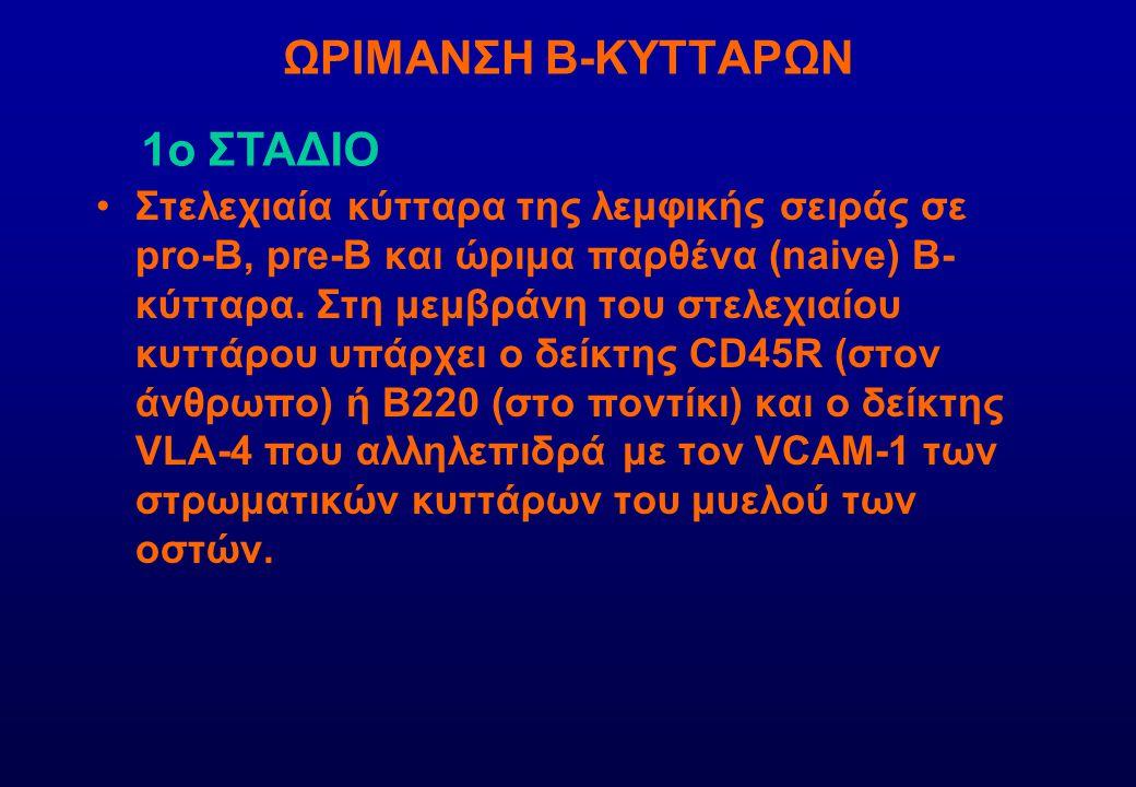 ΩΡΙΜΑΝΣΗ Β-ΚΥΤΤΑΡΩΝ 1ο ΣΤΑΔΙΟ