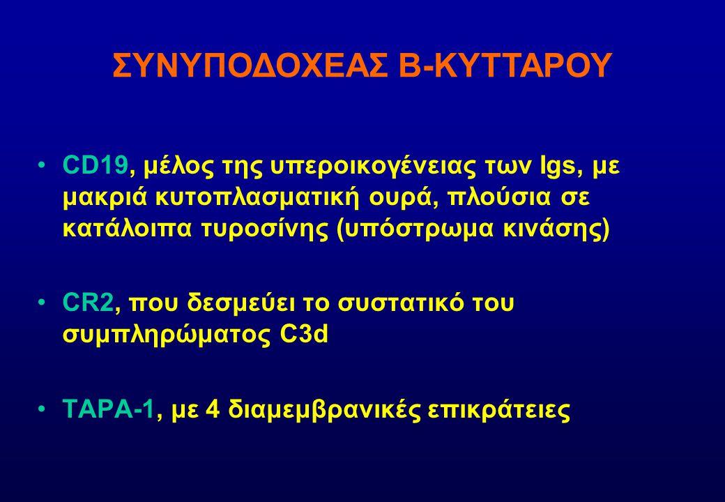 ΣΥΝΥΠΟΔΟΧΕΑΣ Β-ΚΥΤΤΑΡΟΥ