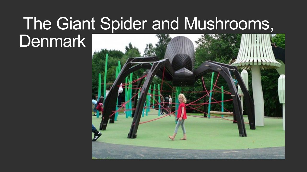 The Giant Spider and Mushrooms, Denmark