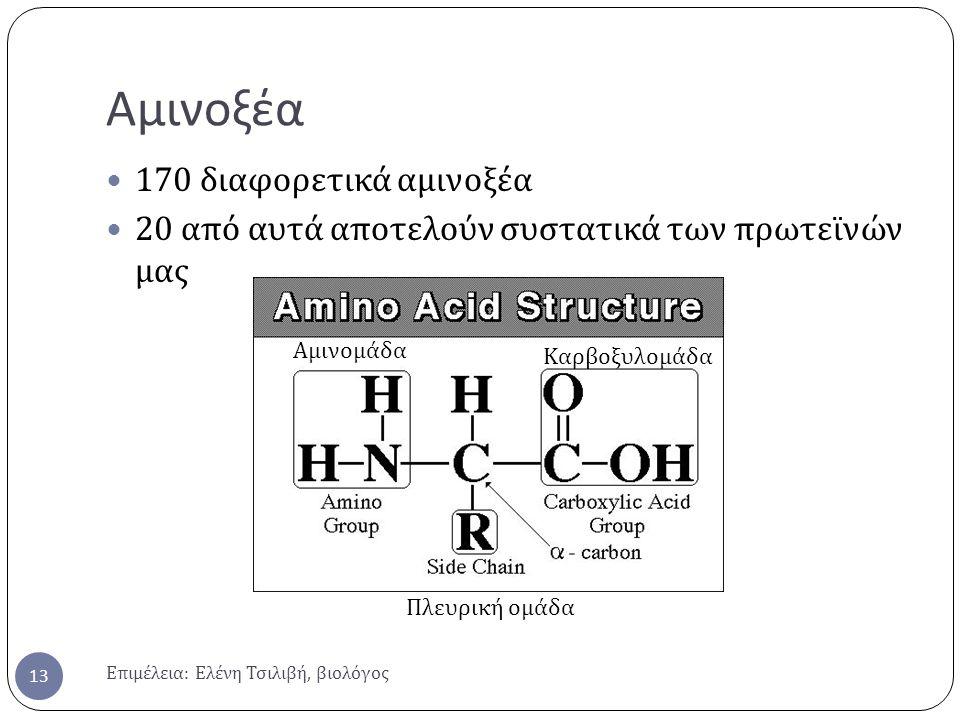 Αμινοξέα 170 διαφορετικά αμινοξέα