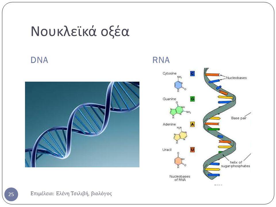 Νουκλεϊκά οξέα DNA RNA Επιμέλεια: Ελένη Τσιλιβή, βιολόγος