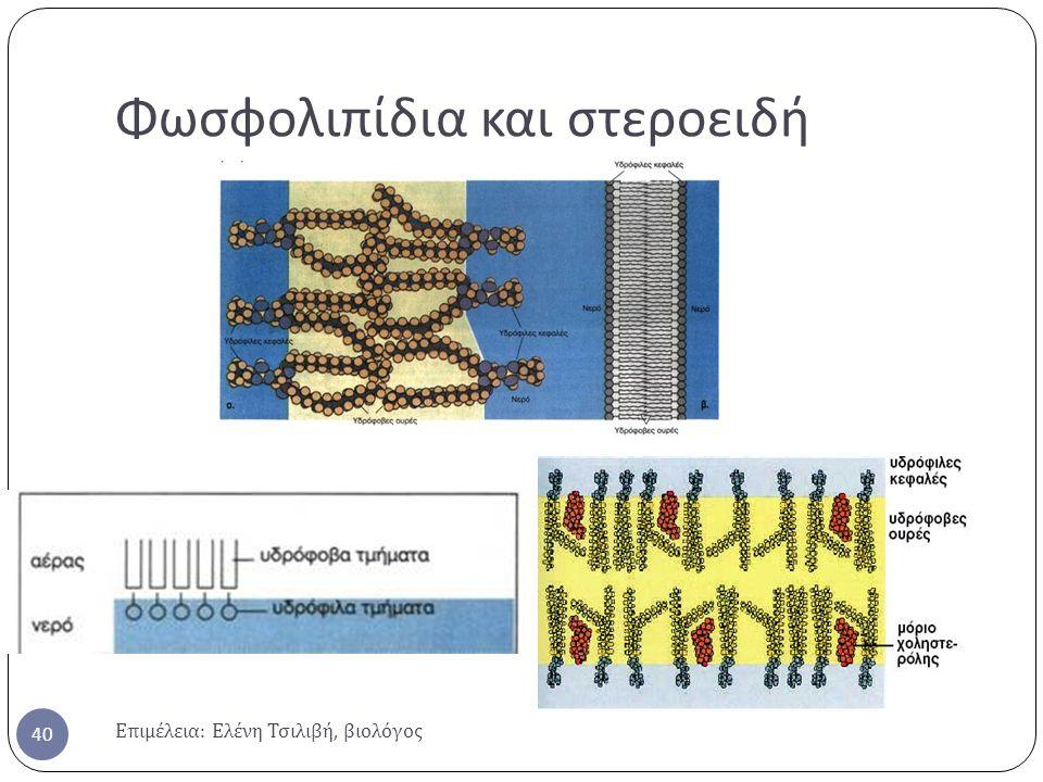 Φωσφολιπίδια και στεροειδή