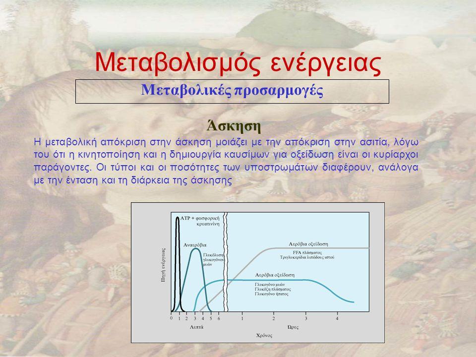 Μεταβολισμός ενέργειας
